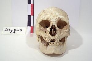 Crâne, fouille du tumulus du Peu-Pierroux