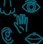 Icone 5 sens